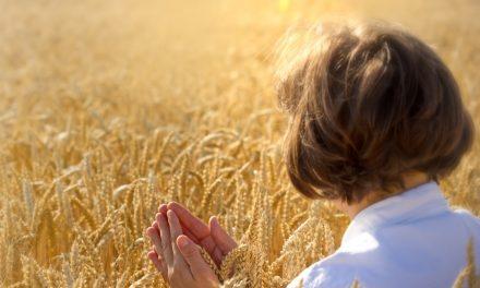 Comment devenir l'ami de Dieu (2)