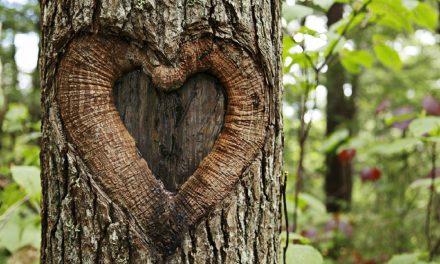 L'Amour de Christ nous presse
