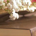L'importance des Écritures!